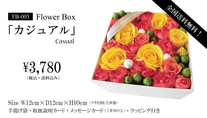 boxbr-005-2