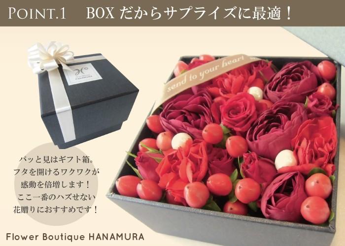 boxbr-2