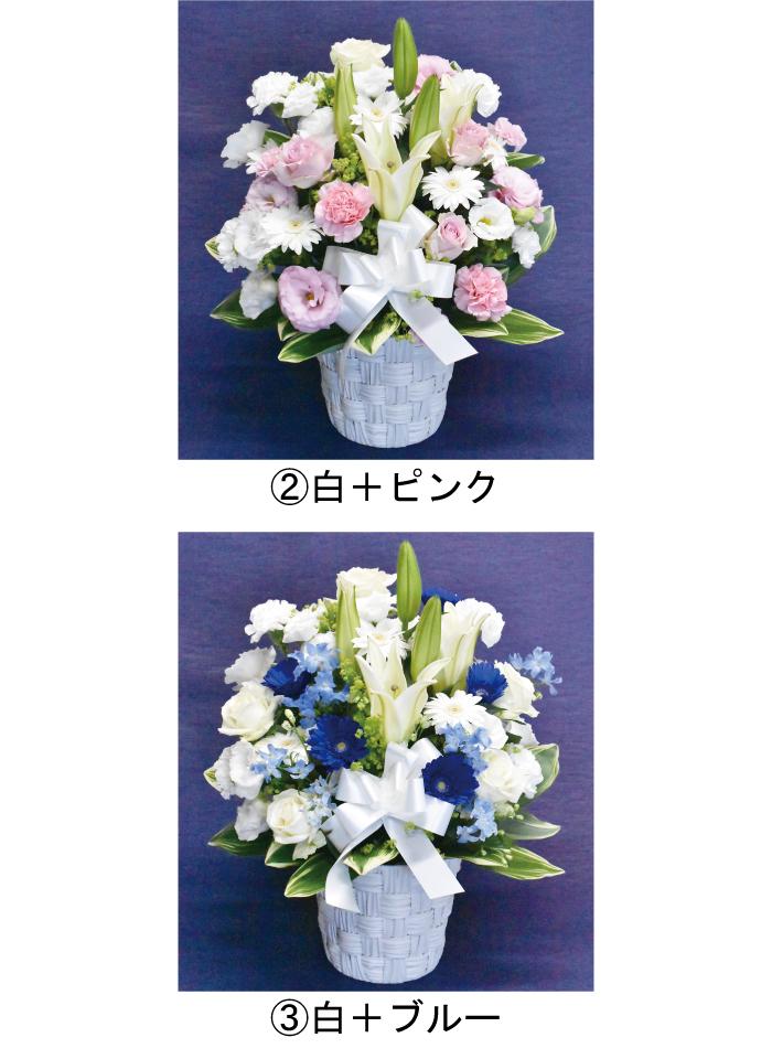 白ピンク、白ブルーなども選択可能